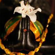 tempio-mandir-koil-ashra-kovil-namaskar-pranam-visita